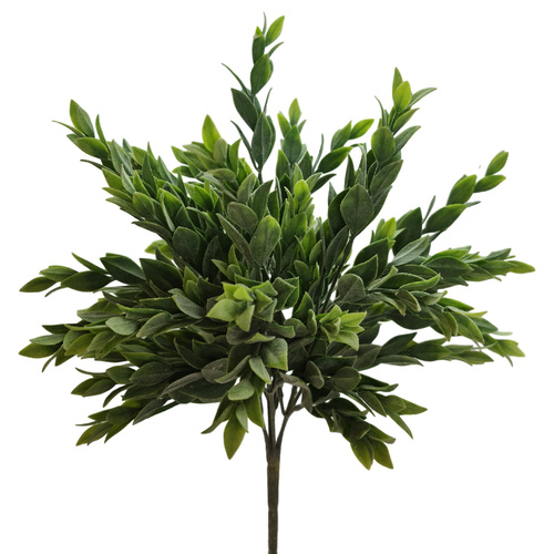 Frosted Ruscus Bush - 30cm
