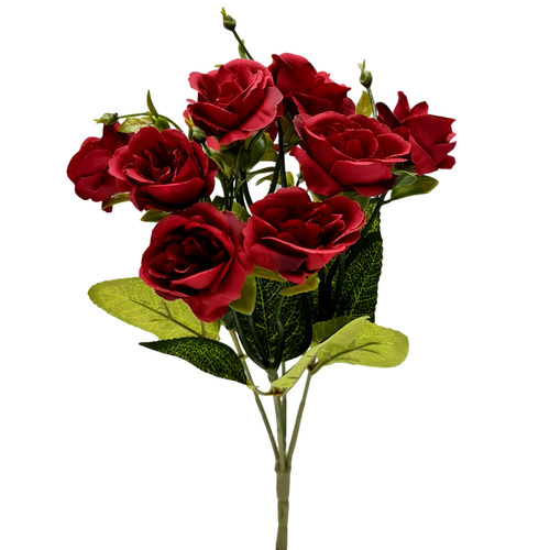 Adela Rose Bush x 7 - 32cmL / Dark Red