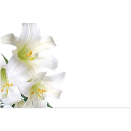 WHITE TIGER LILY CARD x 50
