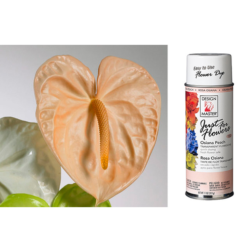 DESIGN MASTER SPRAY JUST FOR FLOWERS -12 OZ - OSIANA PEACH